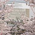 姫路城 平成の大修理